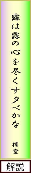 haiku②20140705